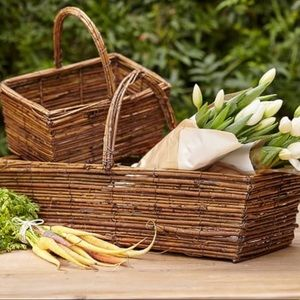 Pottery Barn Large Arboretum Trug Basket